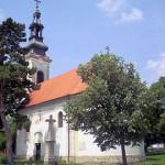 Срби у Мађарској