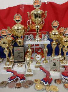 Košarkaško evropsko prvenstvo srpske dijaspore u Italiji